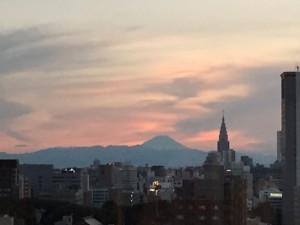 幸運を招いた東京の夕景 (2)