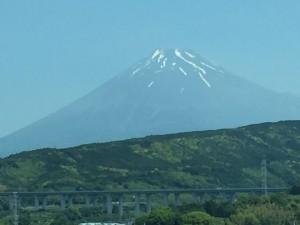 新緑が映える富士山